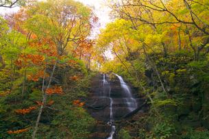 九段の滝の紅葉の写真素材 [FYI03000407]