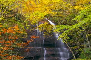 九段の滝の紅葉の写真素材 [FYI03000410]