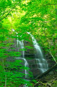 新緑の九段の滝 奥入瀬渓流の写真素材 [FYI03000995]
