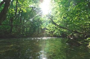 新緑の渓流と木漏れ日の写真素材 [FYI03001142]