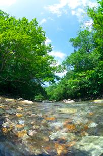 阿武隈川の源流の写真素材 [FYI03001504]