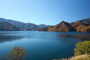 紅葉の田子倉湖の写真素材 [FYI03002138]