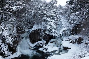 雪の竜頭の滝の写真素材 [FYI03002244]