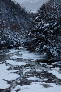 雪の竜頭の滝の写真素材 [FYI03002626]