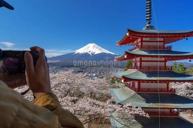 桜咲く忠霊塔の五重の塔と富士山にカメラを向けるの写真素材 [FYI03003507]
