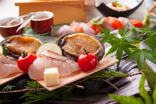 和食コースイメージの写真素材 [FYI03003619]