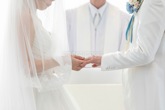 結婚式の結婚指輪の交換の写真素材 [FYI03003760]