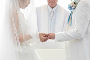結婚式の結婚指輪の交換の写真素材 [FYI03003762]