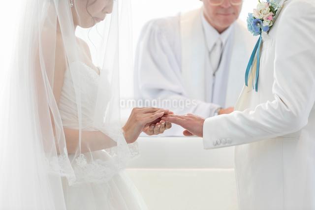 結婚式の結婚指輪の交換の写真素材 [FYI03003764]