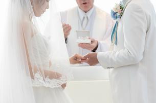 結婚式の結婚指輪の交換の写真素材 [FYI03003767]