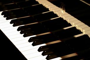 ピアノの鍵盤の写真素材 [FYI03003948]