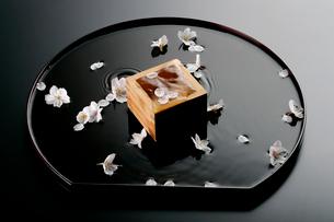 桜の花と半月盆の写真素材 [FYI03003970]