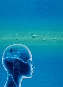 人体の頭脳のイメージ(青) CGのイラスト素材 [FYI03004366]