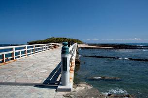 弥生橋より青島を望むの写真素材 [FYI03004659]