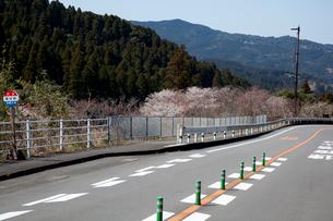 桜咲く堀切峠の写真素材 [FYI03004672]