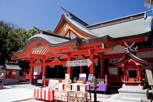 青島神社の写真素材 [FYI03004675]