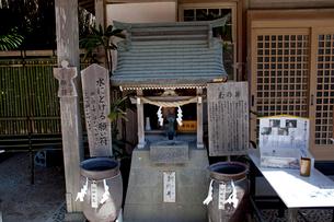 青島神社の玉の井の写真素材 [FYI03004680]