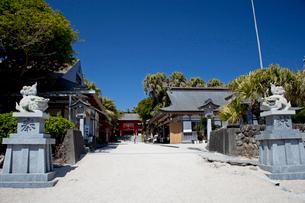青島神社の写真素材 [FYI03004688]
