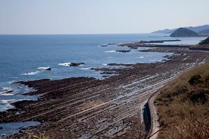 日南海岸の鬼の洗濯板の写真素材 [FYI03004699]