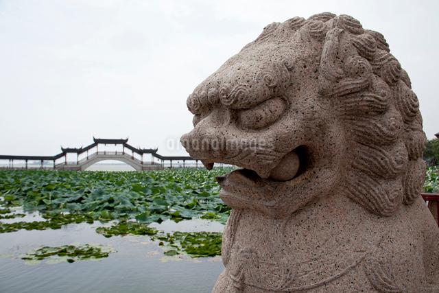 錦渓の古蓮池と古蓮長堤と石像の写真素材 [FYI03004803]