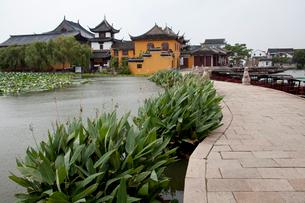 錦渓の古蓮池と蓮池禅院の写真素材 [FYI03004806]
