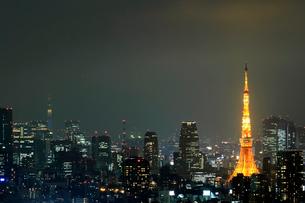 東京タワーと東京スカイツリーの夜景の写真素材 [FYI03005027]