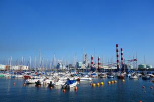 横浜市民ヨットハーバーの写真素材 [FYI03005187]