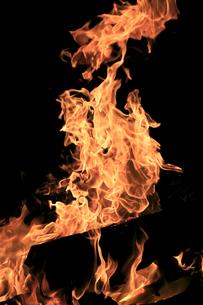 焚き火の写真素材 [FYI03005202]
