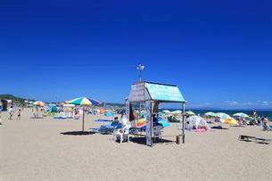 夏の三浦海岸海水浴場の写真素材 [FYI03005272]