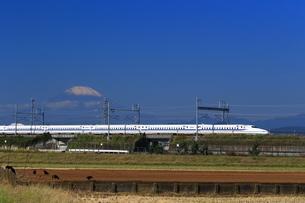 富士山と東海道新幹線の写真素材 [FYI03005336]