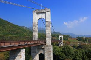 県立秦野戸川公園の風の吊り橋の写真素材 [FYI03005351]
