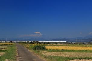 富士山と東海道新幹線の写真素材 [FYI03005353]