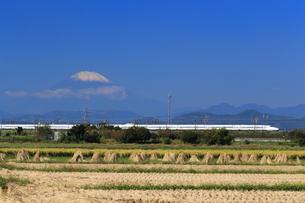 富士山と東海道新幹線の写真素材 [FYI03005356]