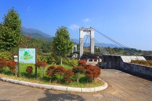 秋の風の吊り橋の写真素材 [FYI03005357]