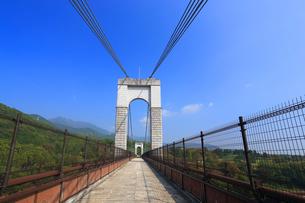 県立秦野戸川公園の風の吊り橋の写真素材 [FYI03005385]