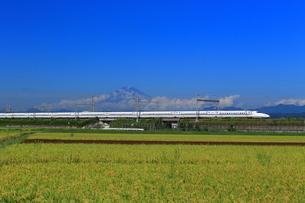 富士山と新幹線の写真素材 [FYI03005401]