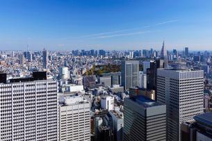 新宿副都心の高層ビル群の写真素材 [FYI03005420]