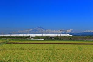 富士山と新幹線の写真素材 [FYI03005430]