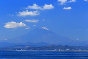 神奈川県,江の島から望む秋の富士山の写真素材 [FYI03005438]