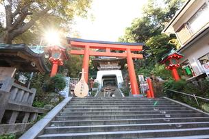 神奈川県,江の島の江島神社の写真素材 [FYI03005449]
