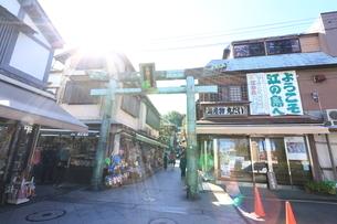 神奈川県,江の島の江島神社参道の写真素材 [FYI03005466]