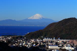 富士山の見える葉山の住宅街の写真素材 [FYI03005521]