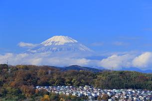 富士山と住宅街の写真素材 [FYI03005540]