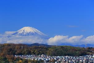 富士山と住宅街の写真素材 [FYI03005542]