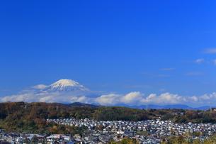 富士山と住宅街の写真素材 [FYI03005574]