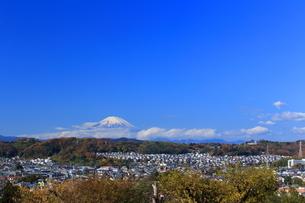 富士山と住宅街の写真素材 [FYI03005577]