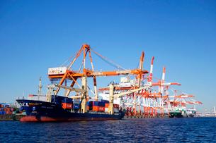 横浜港,本牧埠頭のコンテナ船の写真素材 [FYI03005593]