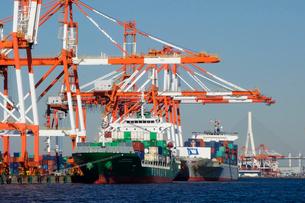 横浜港,本牧埠頭のコンテナ船の写真素材 [FYI03005598]
