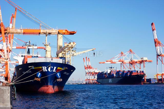 横浜港,本牧埠頭のコンテナ船の写真素材 [FYI03005599]