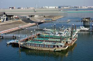 羽田の屋形船の写真素材 [FYI03005621]